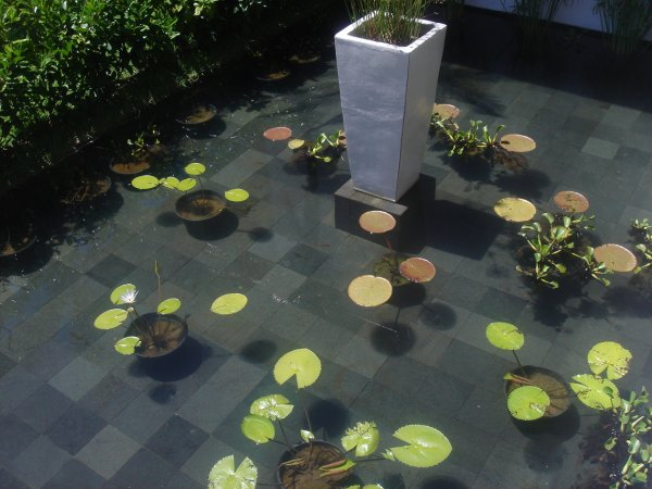 Black Lava Stone for Pool-1