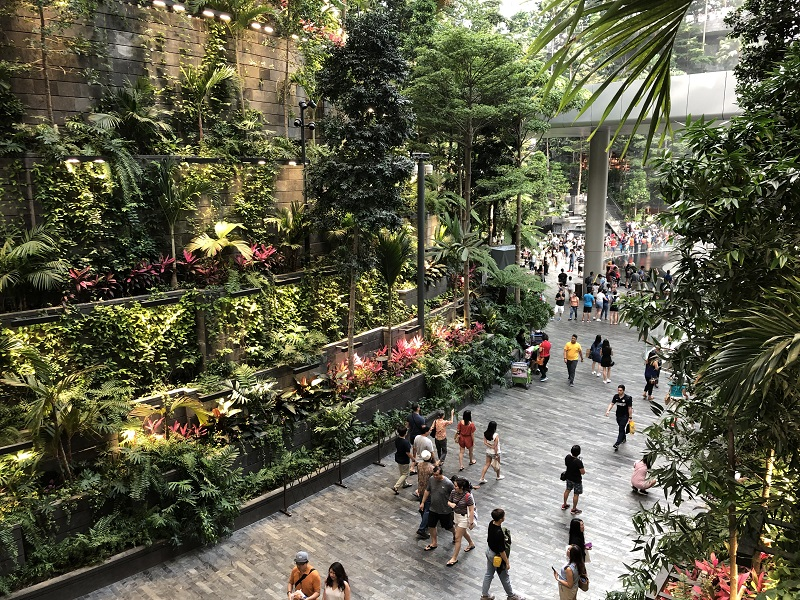 Indonesia Black Volcanic Lava Stone Tiles – Create Natural Ambience in Jewel Changi Airport Singapore with Indonesia Black Lavastone